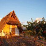 マラウィ湖にいる寄生虫の薬