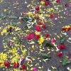 死は人生最後のイベント。インドの葬儀パレード