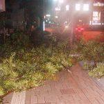 台風の夜の野宿